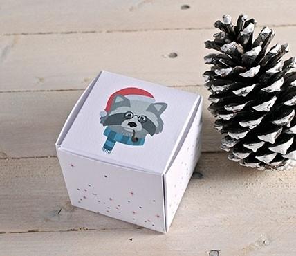 Boîtes carrées de Noël avec un Raton Laveur