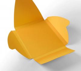 Boîte pour coques iPad