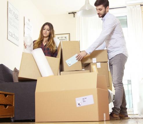 Très grand kit de 30 cartons de déménagement