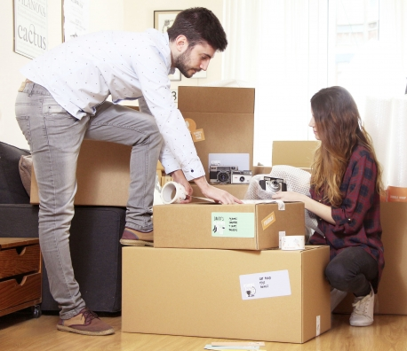 Grand kit de 25 cartons de déménagement