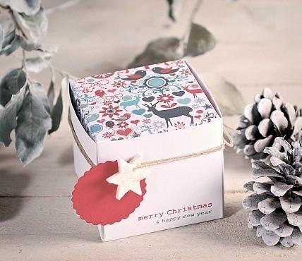 5 Boîtes Cadeau et décoration de Noël 1506_M