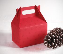 Boîte cadeau pique-nique de Noël