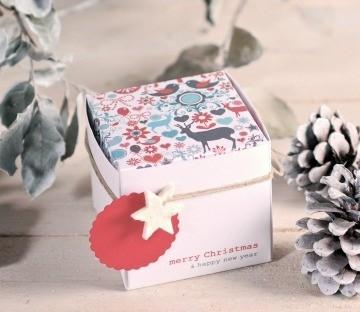 Boîte Carrées de Noël Imprimées