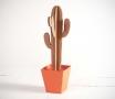 Grand cactus avec un pot en couleur