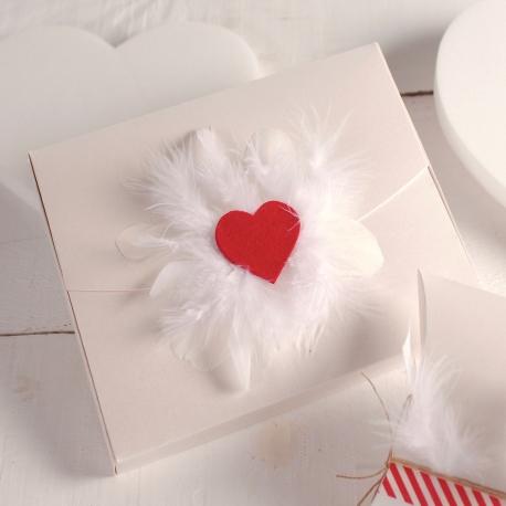 Boîte avec coeur et plumes