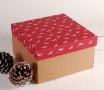Boîte Cadeau avec des Rennes