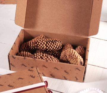 Boîte avec des rennes pour envois postaux