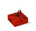 Boîte carrée invitations