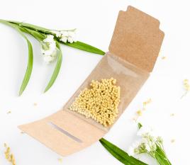 Petite boîte de graines à offrir aux invités