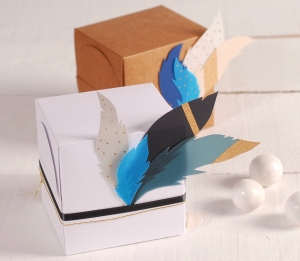 Boîte cadeau carrée avec des plumes