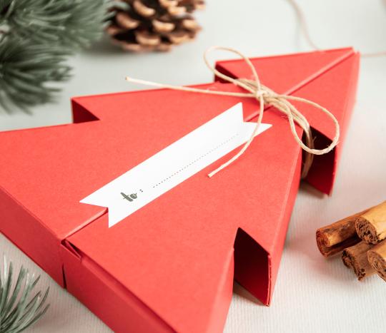 Kit Autocolla et étiquette Noël