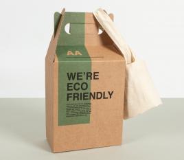 Boîte carton picnic Take Away