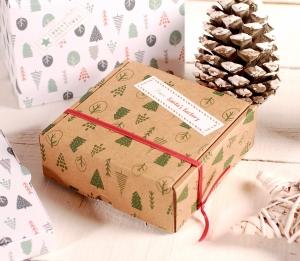 Décoration boîte de Noël